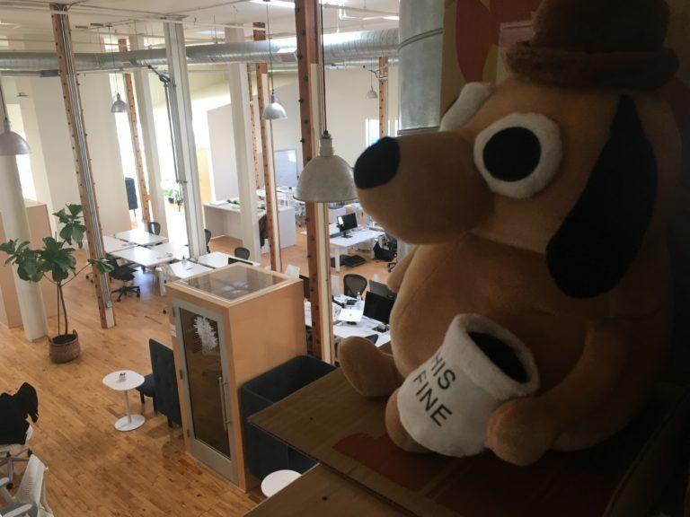 'This is fine' stuffed animal overlooks the Stellar office.